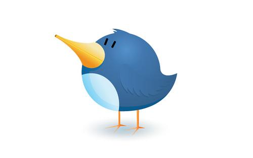 pájaro twitter
