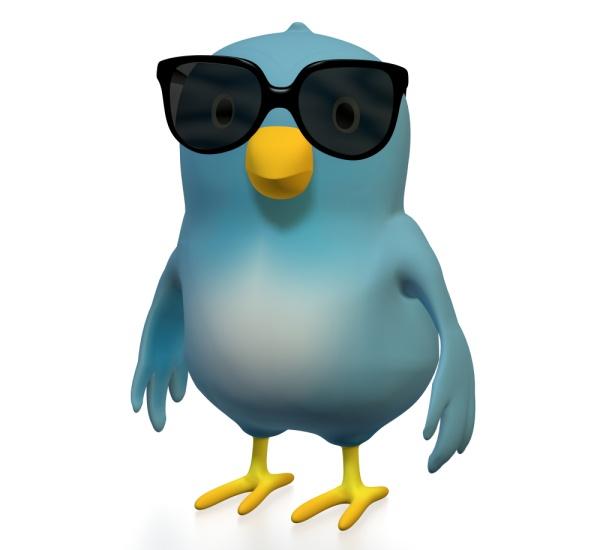 Gurú de Twitter