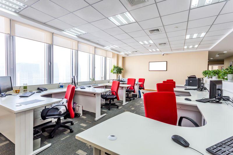 Decoración de oficinas: tips para hacer más felices (y productivos ...